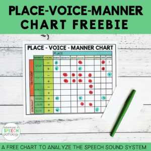 Place Voice Manner Chart